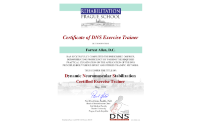 Dynamic Neuromuscular Stabilization Exercise Trainer (DNSET)